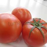 f-tomato160