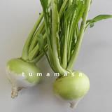 touyama160