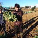 20170115farm (3)